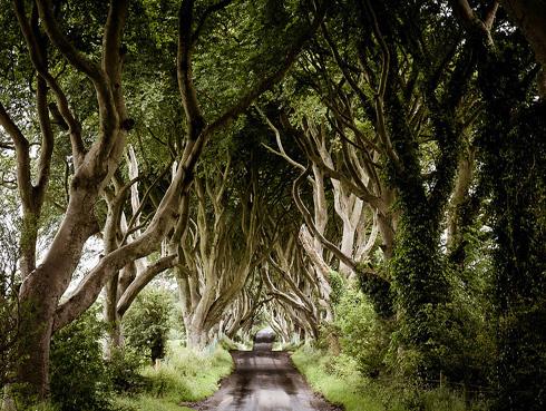 #Sueña con Irlanda